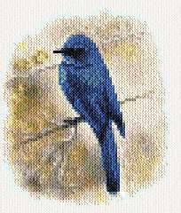 cross stitch pattern Bluebird