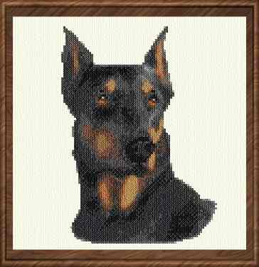 cross stitch pattern Doberman