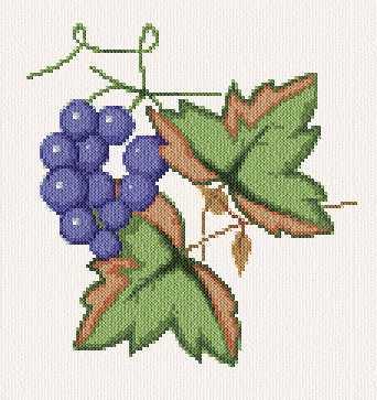 Grapes Cross Stitch Pattern fruit