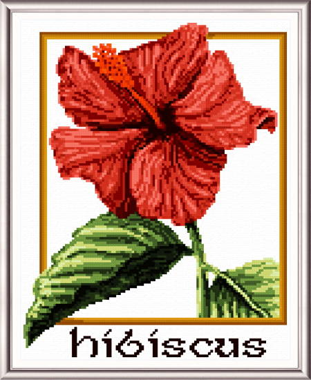 cross stitch pattern Hibiscus