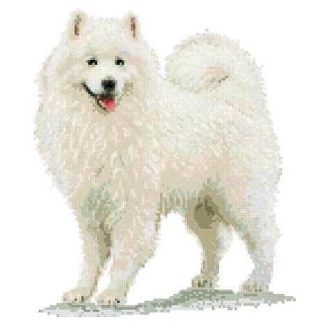 cross stitch pattern Samoyed