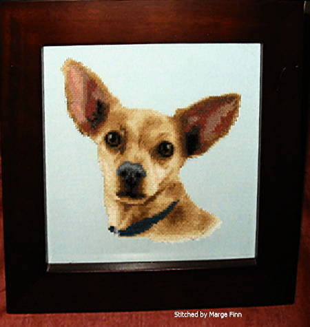 cross stitch pattern Taco (chihuahua)