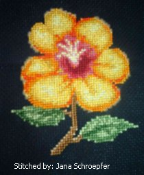 cross stitch pattern Wildflower
