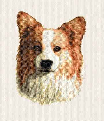 cross stitch pattern Corgie