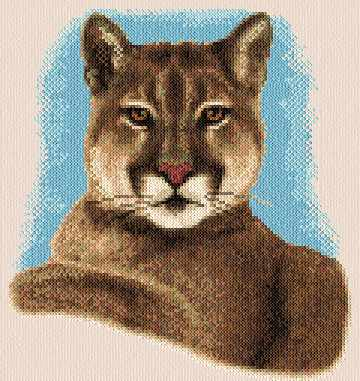 cross stitch pattern Cougar