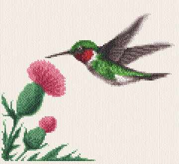 cross stitch pattern Hummingbird