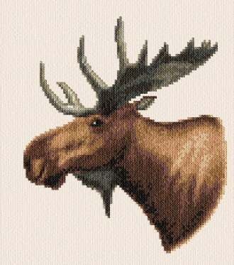 cross stitch pattern Moose