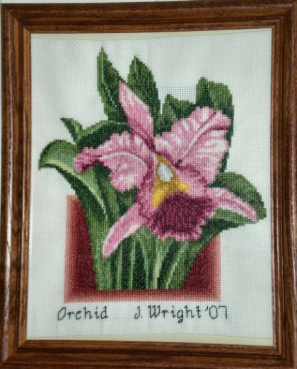 cross stitch pattern Orchid