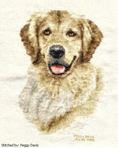 cross stitch pattern Golden retriever