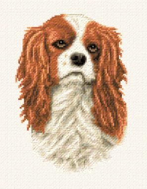cross stitch pattern King Charles Cavalier