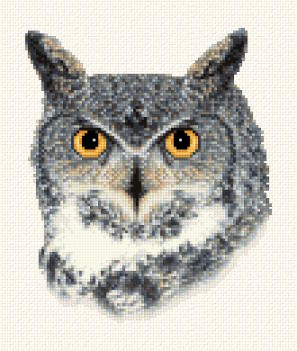 cross stitch pattern Great Horned Owl