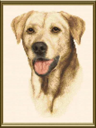 cross stitch pattern Yellow Labrador Retriever