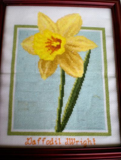 cross stitch pattern Daffodil
