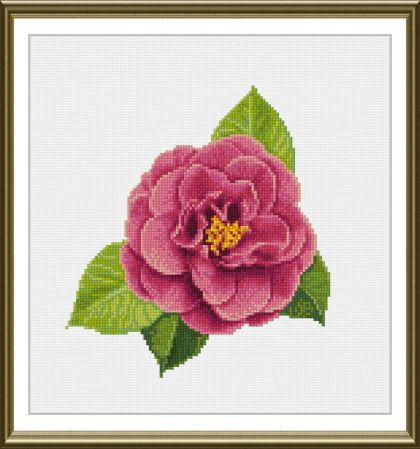 cross stitch pattern Camellia