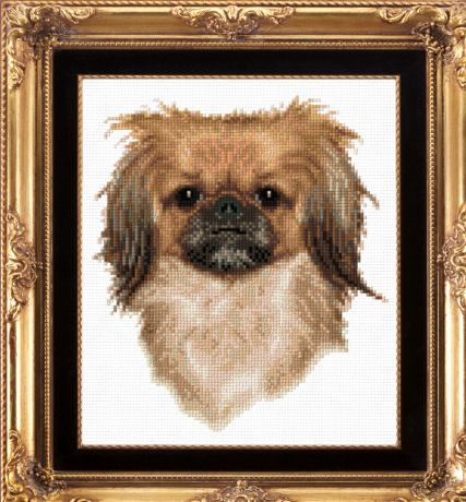 cross stitch pattern Pekingese