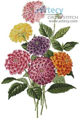 cross stitch pattern Dahlias