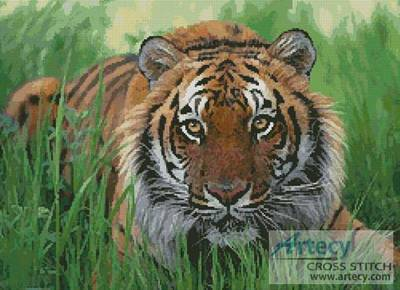 cross stitch pattern Bengal Tiger in Grass