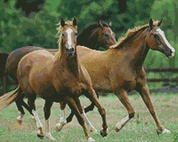 Horses 3 Cross Stitch Pattern horses