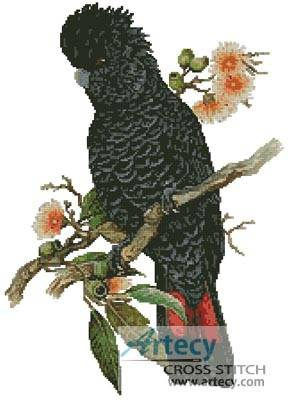 cross stitch pattern Red Tailed Cockatoo