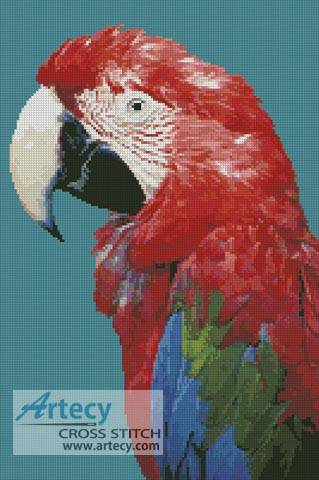 cross stitch pattern Green-winged Macaw