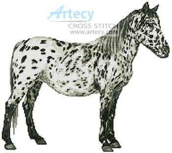 cross stitch pattern Appaloosa