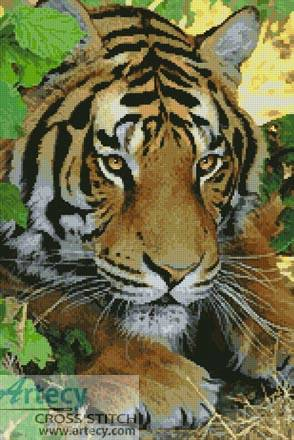cross stitch pattern Bengal Tiger 3