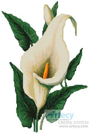 cross stitch pattern Calla Lily
