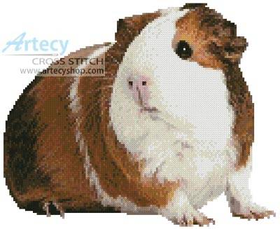 Amigurumi Guinea Pig : Free guinea pig knitting patterns very simple free knitting patterns