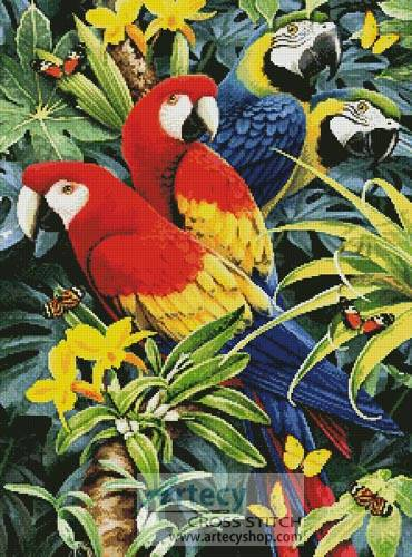 cross stitch pattern Tropical Macaws