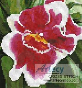 cross stitch pattern Mini Red and White Orchid