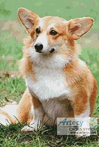Pembroke Welsh Corgi Cross Stitch Pattern dogs