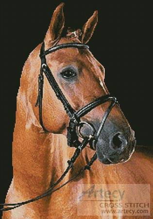 cross stitch pattern Portrait of a Brown Horse