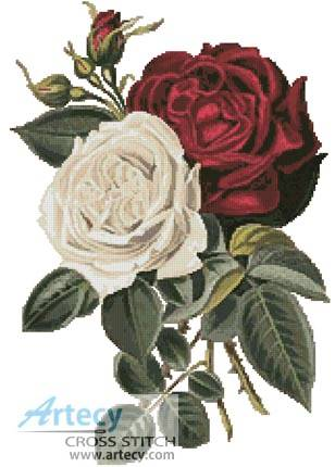cross stitch pattern Red and White Roses