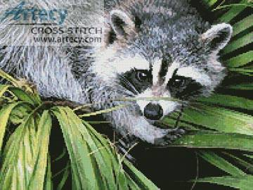 cross stitch pattern Raccoon
