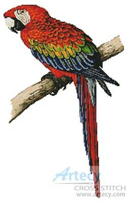 cross stitch pattern Red and Blue Macaw