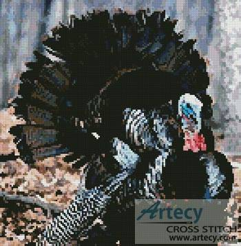 cross stitch pattern Turkey 3