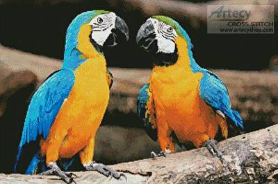 cross stitch pattern Blue and Yellow Macaws