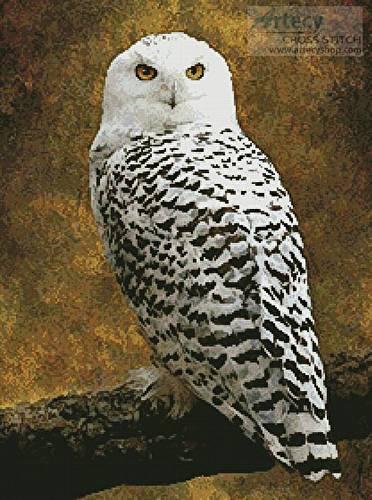 Snowy Owl Cross Stitch Pattern Owl