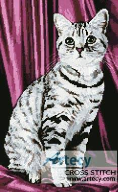 cross stitch pattern Tabby
