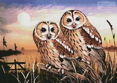 cross stitch pattern Tawny Owls