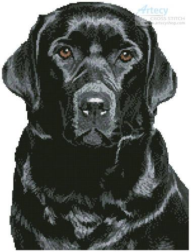 Black Labrador Cross S...