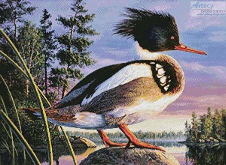 cross stitch pattern Red-Breasted Merganser