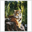 cross stitch pattern Sumatran Tigress